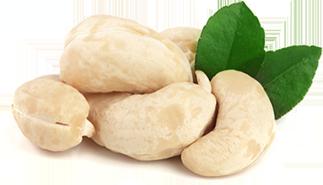 Ezra Cohen Montreal Cashew Nuts